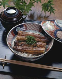 うな丼の写真素材 [FYI01424691]
