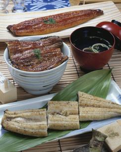 鰻の蒲焼・うな丼・肝すい・白焼の写真素材 [FYI01424792]