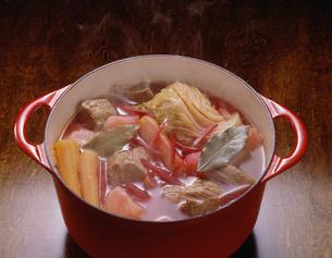 ボルシチ鍋の写真素材 [FYI01424891]