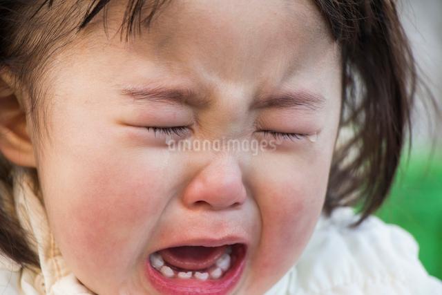 泣く女の子の写真素材 [FYI01425039]