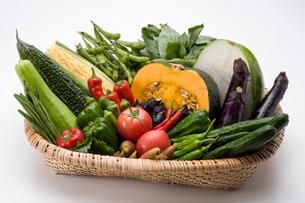 夏野菜の写真素材 [FYI01425096]