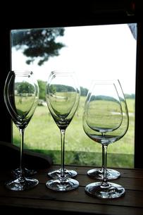 ワイングラスの写真素材 [FYI01425458]