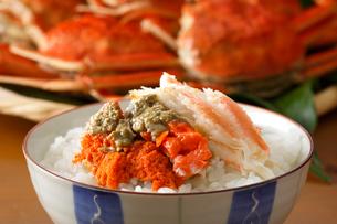 セイコガニご飯の写真素材 [FYI01425551]