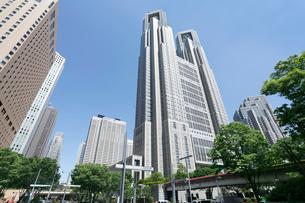 都庁と西新宿ビル群の写真素材 [FYI01425564]