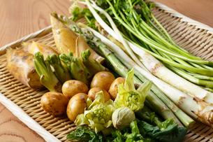 春野菜の写真素材 [FYI01425647]