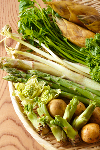 春野菜の写真素材 [FYI01425661]