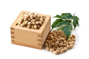 節分 大豆 豆まきの写真素材 [FYI01425678]