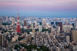 都心の夕景(東京タワーよりお台場を見る)の写真素材 [FYI01425898]