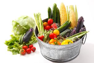夏野菜の写真素材 [FYI01426088]