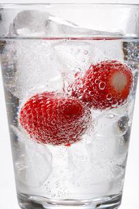 炭酸水とイチゴの写真素材 [FYI01426199]