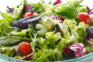 サラダ・グリーンサラダの写真素材 [FYI01426353]