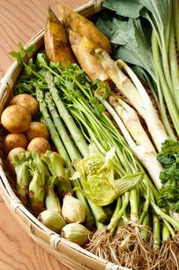 春野菜の写真素材 [FYI01426582]