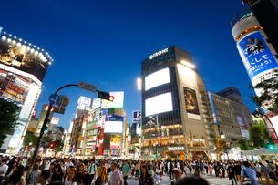 渋谷・スクランブル交差点夜景の写真素材 [FYI01426609]