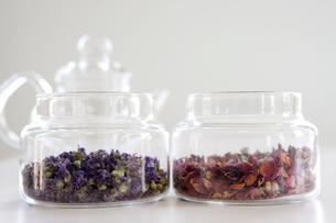 マローブルーとローズレッドの茶葉の写真素材 [FYI01426665]