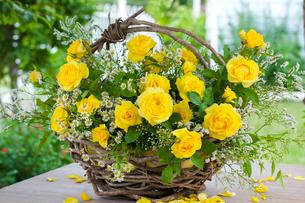 黄色いバラとスターチスとマトリカリアの花カゴの写真素材 [FYI01426725]