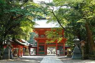 鹿島神宮・桜門の写真素材 [FYI01427009]