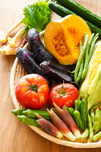夏野菜の写真素材 [FYI01427087]