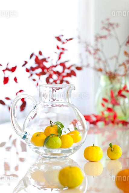 テーブルの上のユズと水差しと紅葉の葉の写真素材 [FYI01427336]
