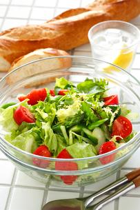 グリーンサラダの写真素材 [FYI01427435]