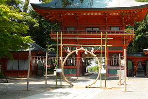 鹿島神宮・桜門の写真素材 [FYI01427442]