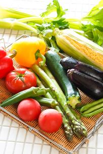 夏野菜の写真素材 [FYI01427513]