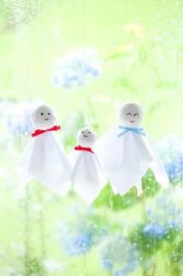 雨の日のてるてる坊主の親子 アジサイの花と若葉の写真素材 [FYI01427933]