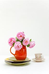 赤い水差しのバラの花とコーヒーカップの写真素材 [FYI01428083]