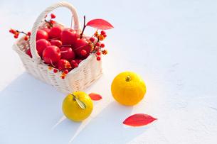 カゴの姫リンゴとツルウメモドキの実とユズの写真素材 [FYI01428240]