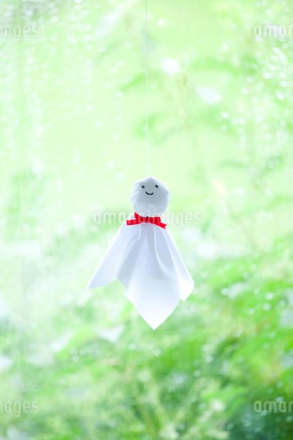 雨の日のてるてる坊主と若葉の写真素材 [FYI01428342]
