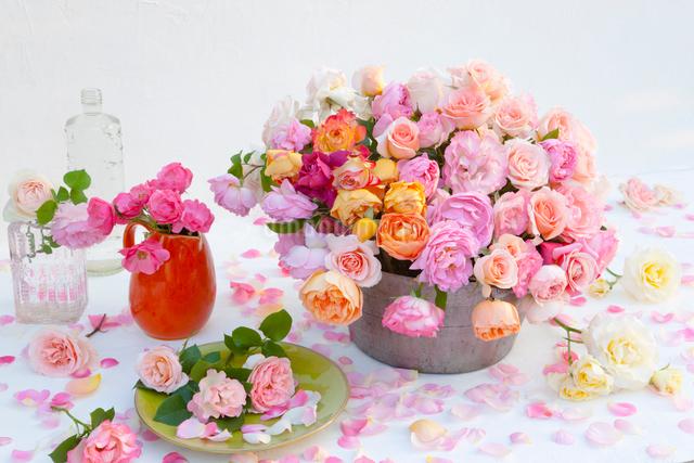 水差しとバケツに入ったバラの花の写真素材 [FYI01428421]