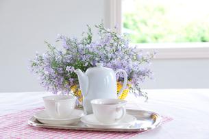 紅茶と紫の花と窓の写真素材 [FYI01428520]