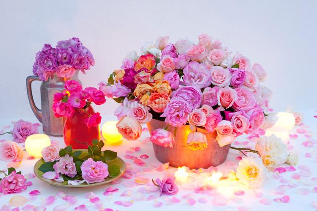 水差しとバケツに入ったバラの花とキャンドルの写真素材 [FYI01428555]