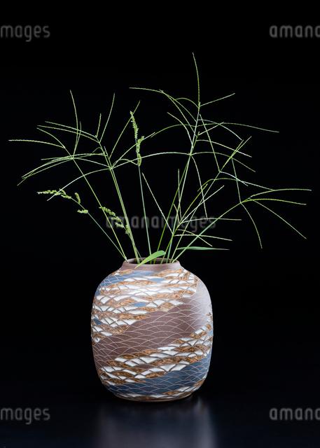 陶器の花瓶とオヒシバの写真素材 [FYI01428674]