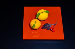 赤い漆器とユズの写真素材 [FYI01428715]
