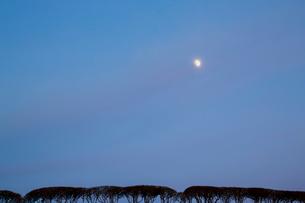 夕暮れの月の写真素材 [FYI01428870]