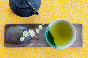 日本茶と梅の花の写真素材 [FYI01429021]