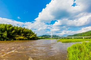 台風で増水した那珂川と烏山大橋の写真素材 [FYI01429098]
