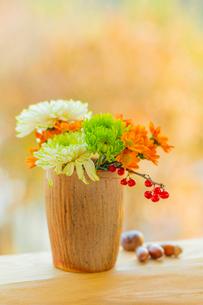 キクの花とツルウメモドキと陶器の器の写真素材 [FYI01429115]