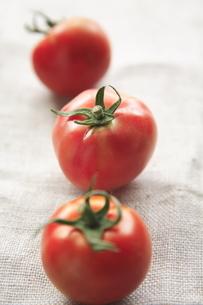3個のトマトの写真素材 [FYI01429227]