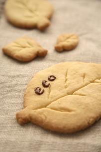 ECOの文字がついた葉型のクッキーの写真素材 [FYI01429321]