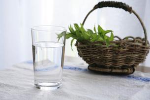 グラスに入った水と籠に入ったミントの写真素材 [FYI01429344]
