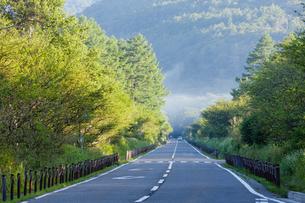 新緑の戦場ヶ原と日本ロマンチック街道の写真素材 [FYI01429489]