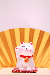 招き猫 後方に金の扇の写真素材 [FYI01429535]