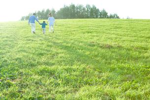 手をつないで草原を歩く後姿の両親と少年の写真素材 [FYI01429563]