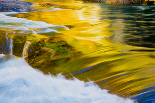 紅葉に映える片品川の流れの写真素材 [FYI01429782]