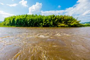 台風で増水した那珂川と竹林の写真素材 [FYI01430045]