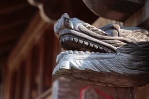 龍のモニュメントの写真素材 [FYI01430150]