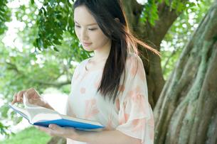 木の下で本を読む10代女性の写真素材 [FYI01430281]