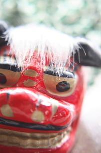 獅子舞の写真素材 [FYI01430357]