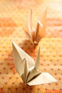 折鶴の写真素材 [FYI01430377]